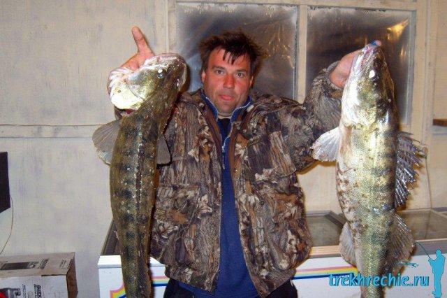 Как ловить судака на ахтубе в апреле