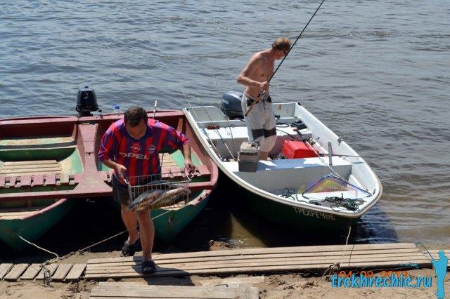 купить живца для рыбалки в кузнецке