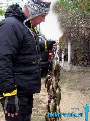 Ловля судака в ноябре на спиннинг - Про рыбалку